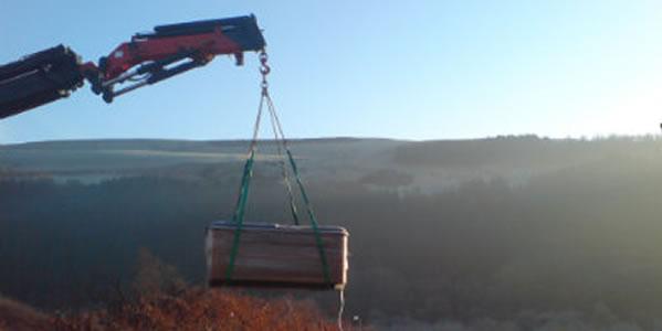 Crane Or Hiab?